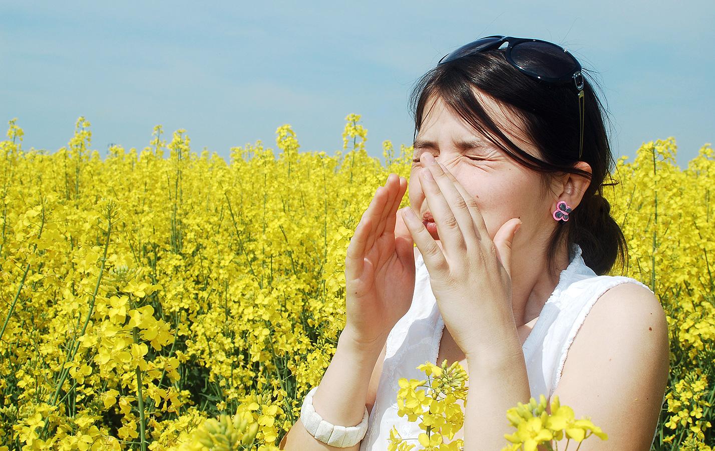 Allergier