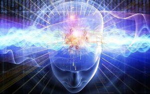 Bli smartare med ayurvediska örter